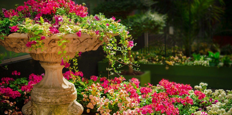 Bloemenpot